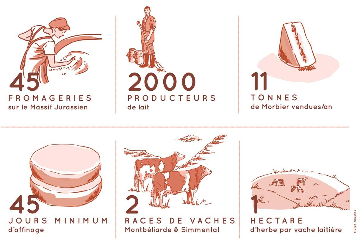 45 fromageries en Franche-Comté, 2000 producteurs laitiers, 11 tonnes de Morbier vendues/an, 45 jours minimum d'affinage, 2 races de vaches Montbélarde & Simmental, 1 hectare d'herbe par vache laitière